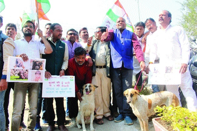 Cong protests stray dog menace