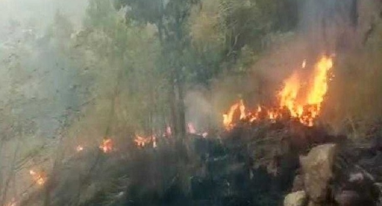 10 members of trekking expedition killed in TN forest fire, 27 rescued