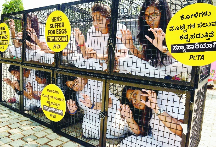 Peta India activists sit inside a cage during a demonstration against animal cruelty in Bengaluru