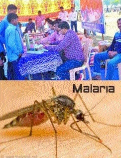 World Malaria Day observed