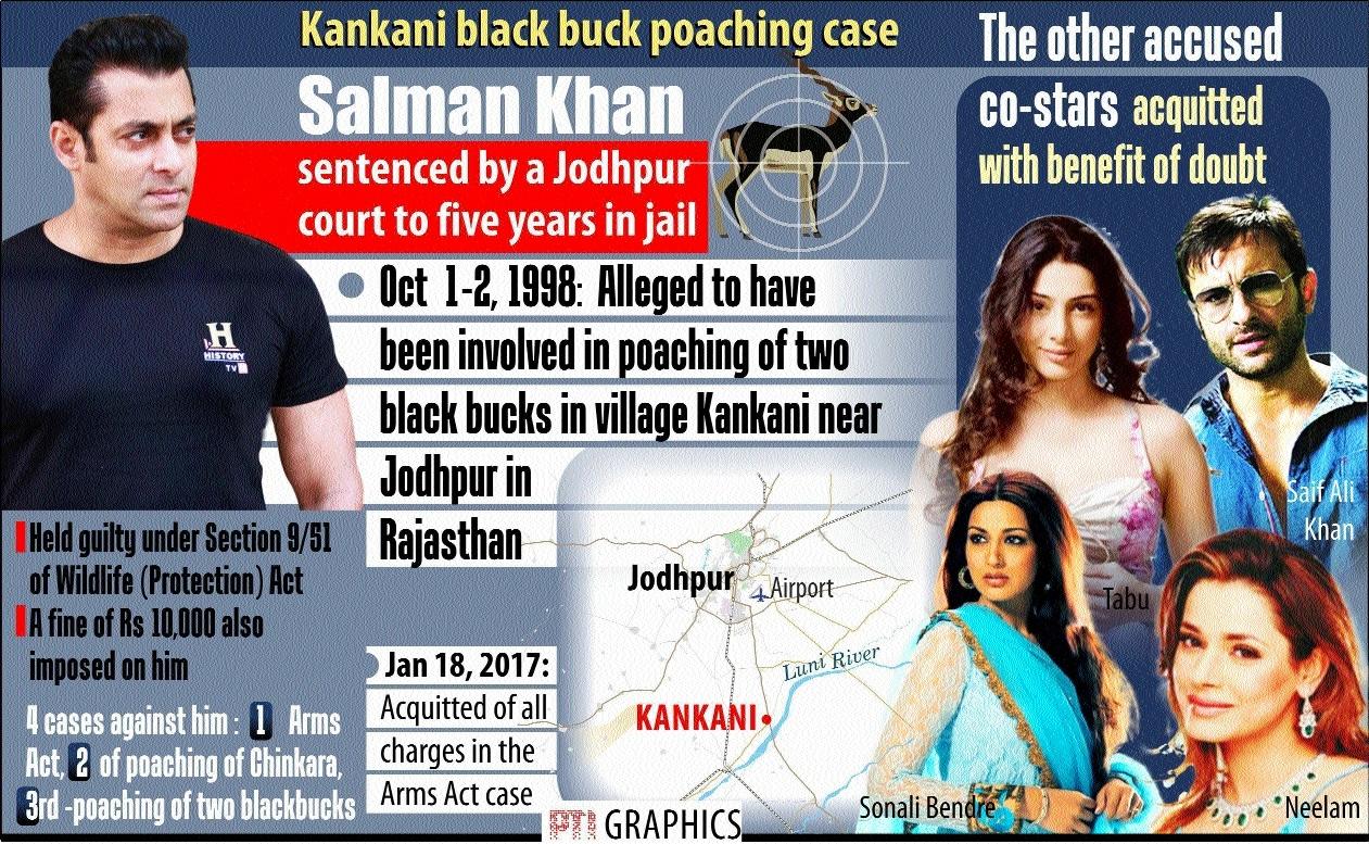 Salman gets 5-year jail in blackbuck poaching case