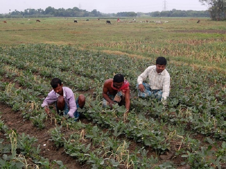 Mah's initiatives for farming sector