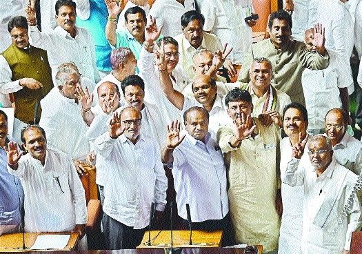 Kumaraswamy wins trust vote