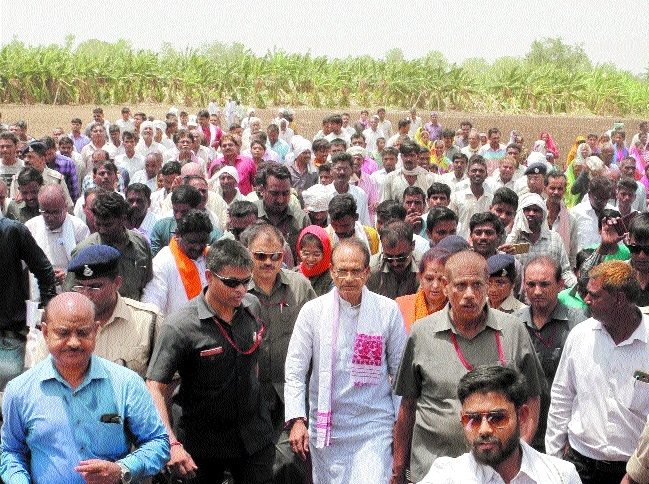 CM takes stock of windstorm-hit banana crop in Burhanpur distt