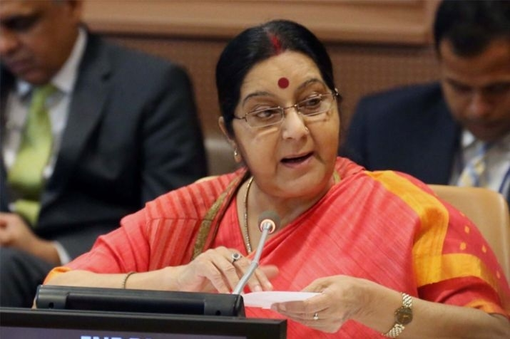 Developing countries need support to combat climate change: Sushma