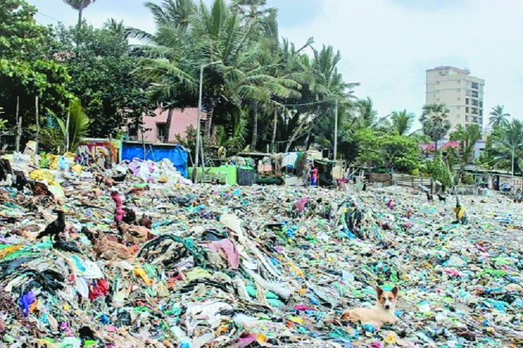 Plastic ban: Industry stares at loss of Rs 15,000 crore