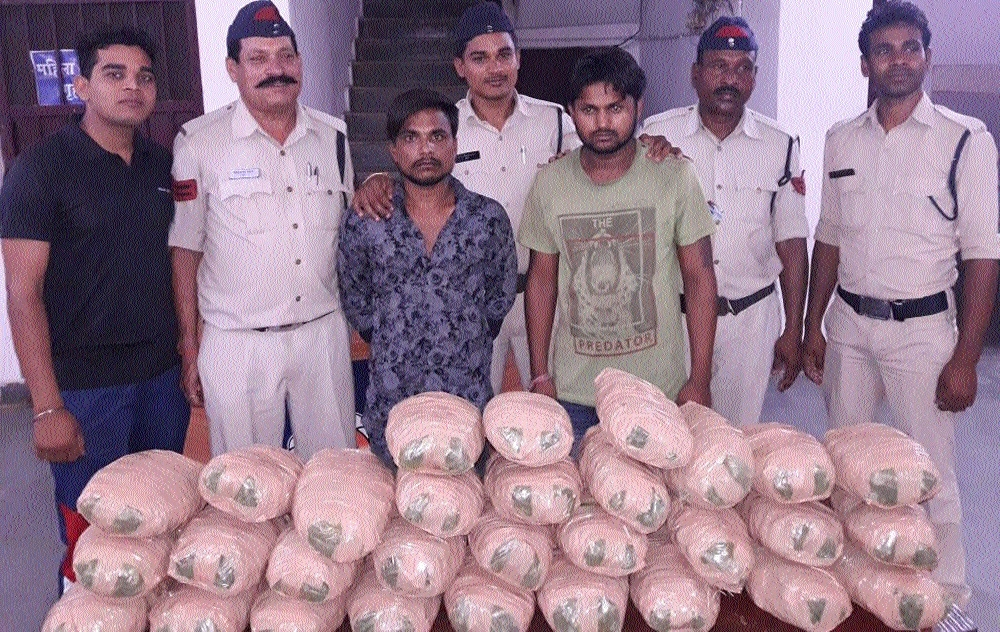 Police confiscate 30-kg cannabis