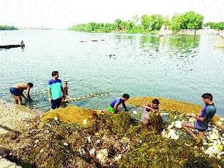 Members of Shivnath Seva Mandal undertake cleaning of river