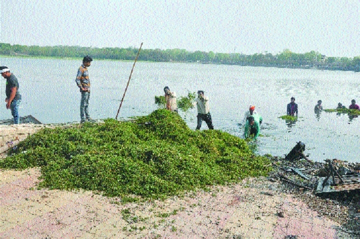Unplanned urbanisation taking its toll on water bodies of city