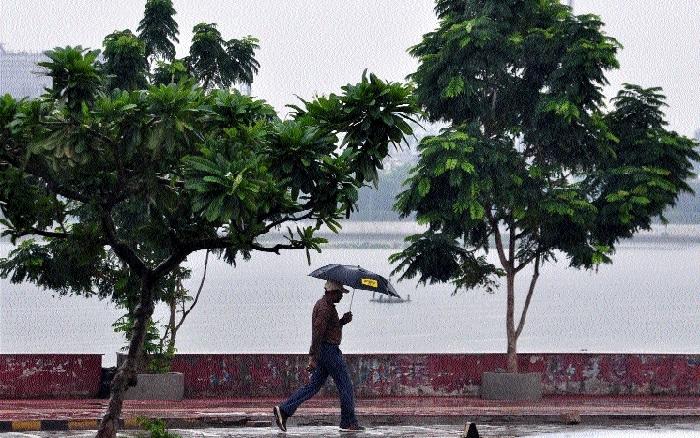Southwest monsoon reaches Bastar