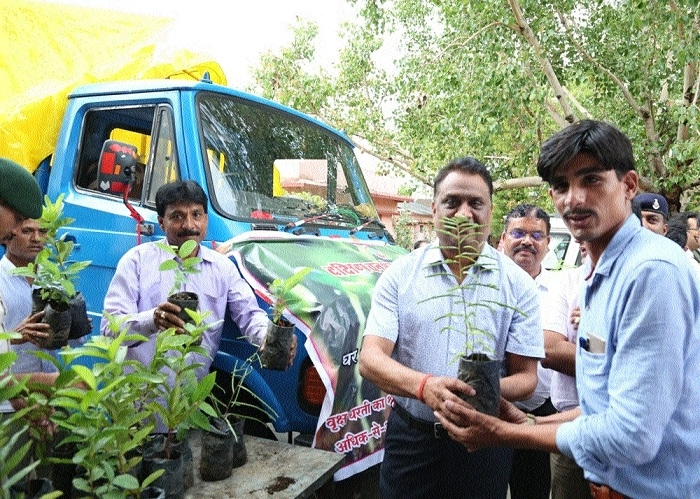 Collector inaugurates mobile sapling selling service