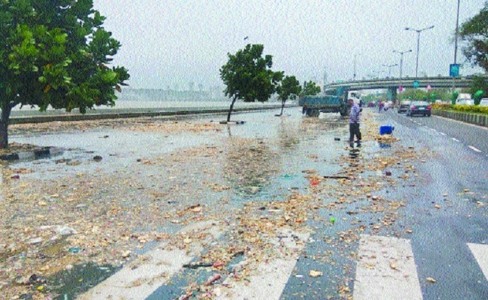 12,000 tonnes of debris thrown out by sea along Marine Drive: HC told