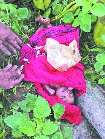 New born baby girl abandoned near pond at Daldali