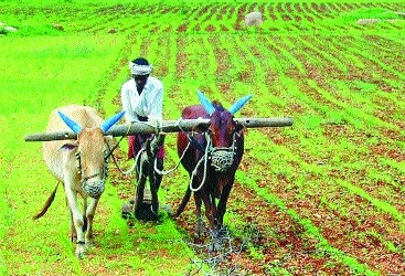 'Farm loan waivers to touch USD 40 bn by 2019 elections'