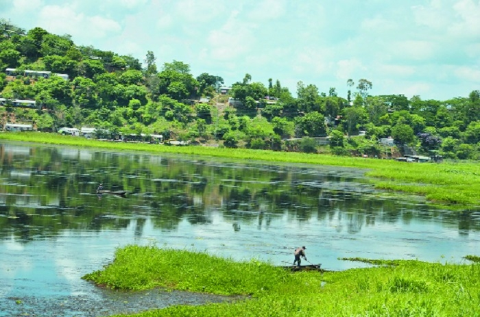 Vidarbha has vast fish production potential: Report