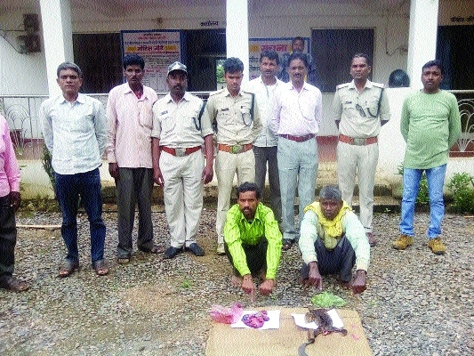 2 poachers arrested with Ghorpad flesh