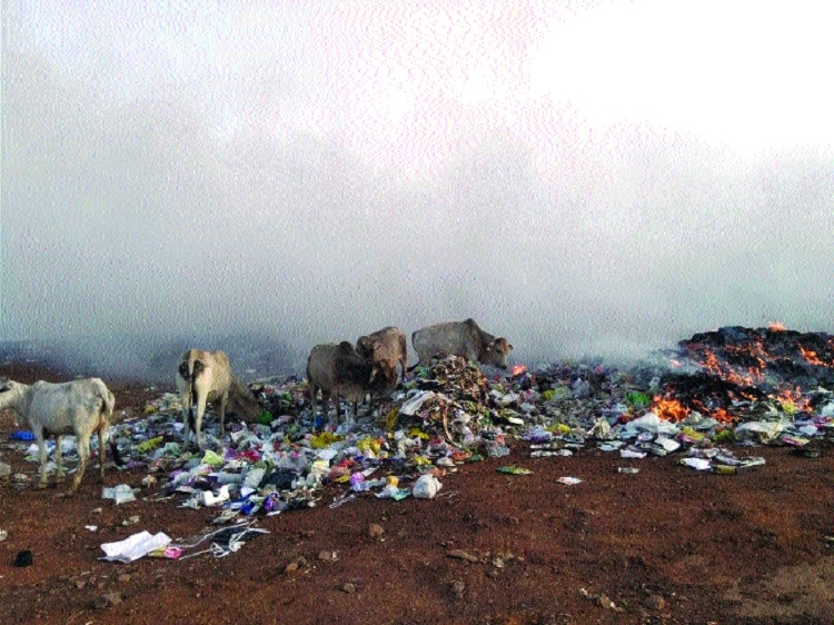 Improper garbage disposal at Kajlikheda Kaala Pani calls for attention