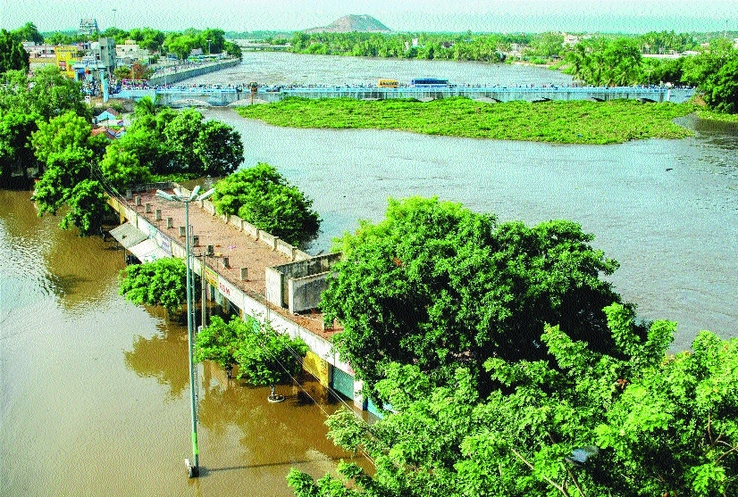 TN CM assures aid for crop loss due to floods