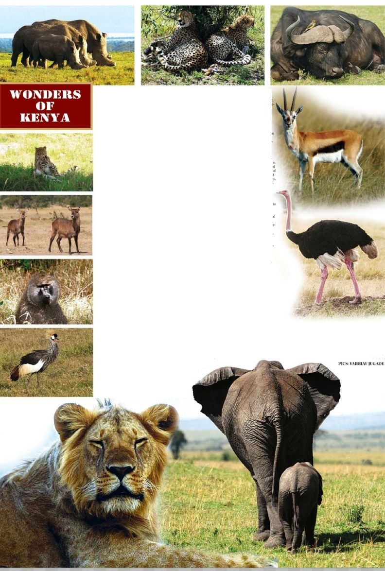 WONDERS OF KENYA