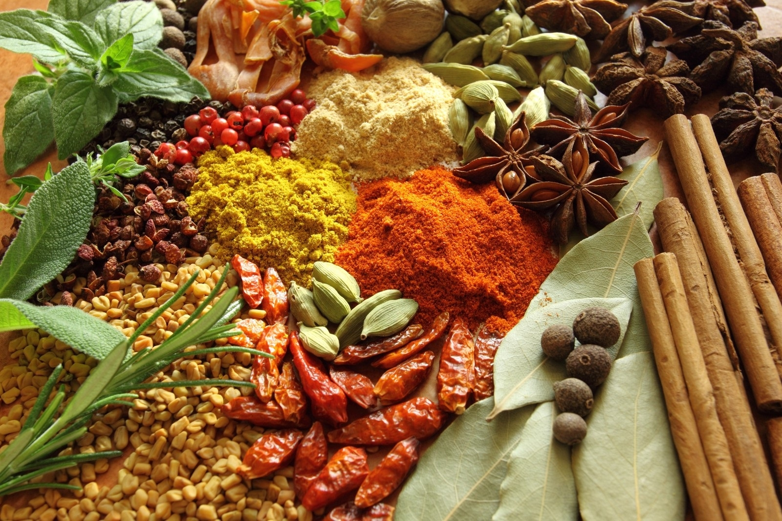 Medicinal herbs in India and their conservation