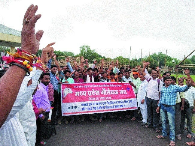 MP Gausevaks Sangh demands appointment at Panchayat-level