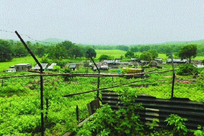Notorious for poaching, Dolar village relocated from Melghat