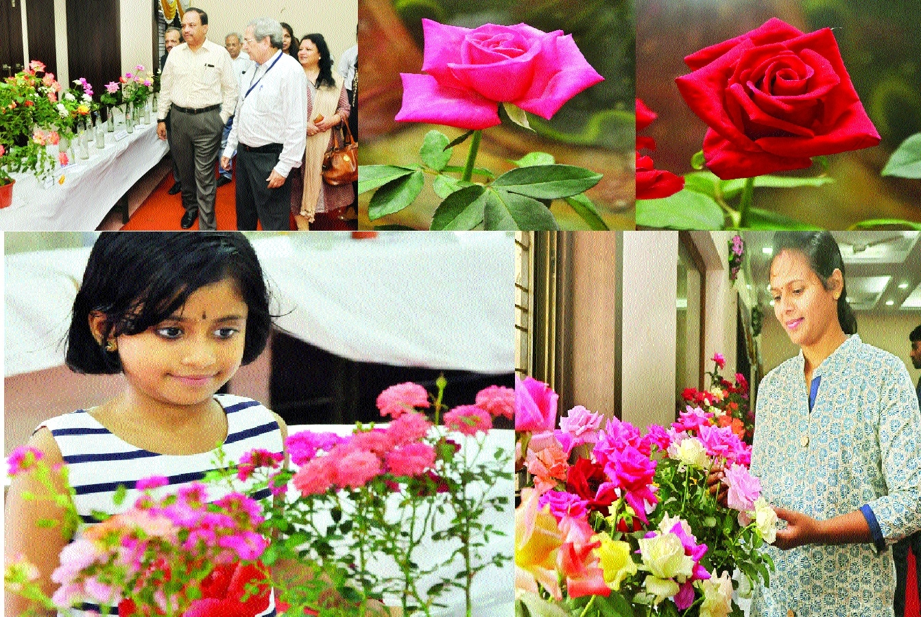 Hitavada-Garden Club flower show wins hearts