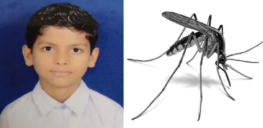 9-yr-old dies of dengue