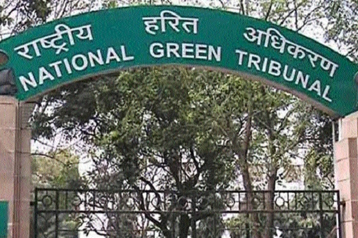 NGT forms panel to curb pollution in Singrauli, Sonebhadra districts