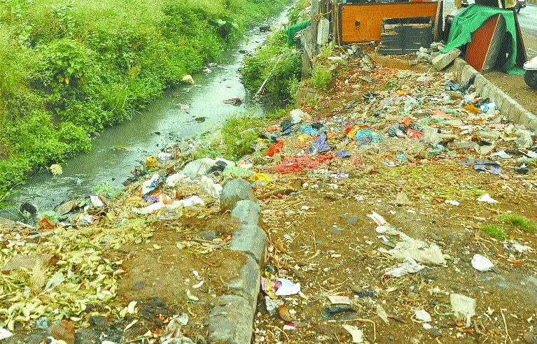 After NGT rap, Govt forms committee to oversee solid waste management