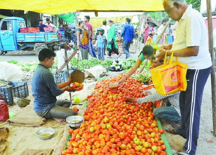 Tomato prices crash due to oversupply in wholesale market