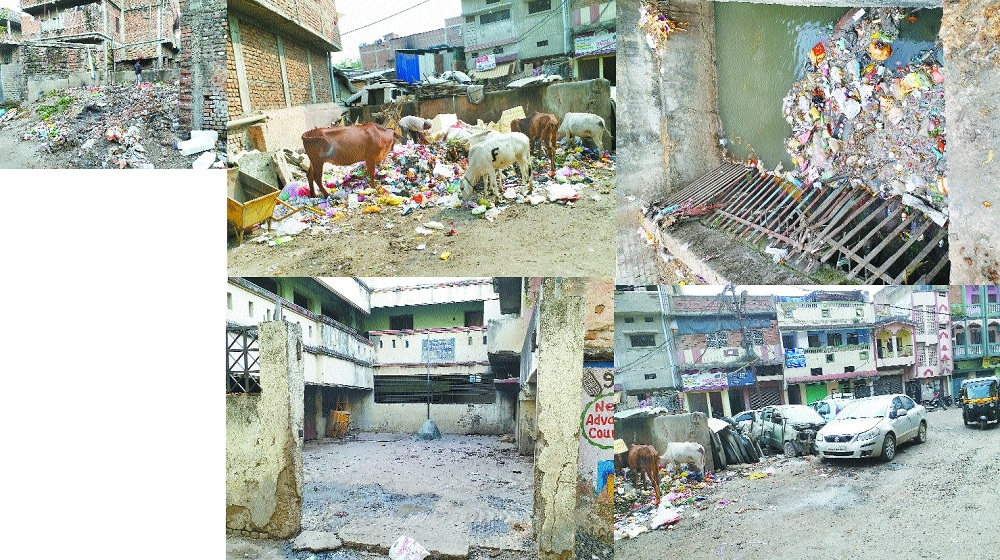 Heaps of garbage, contaminated water, encroachment troubling Mominpura