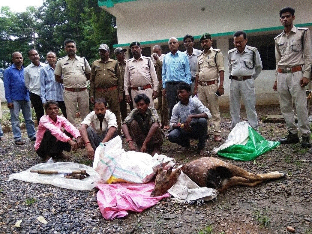 Four held for poaching, eating cheetal in Lalbarra range