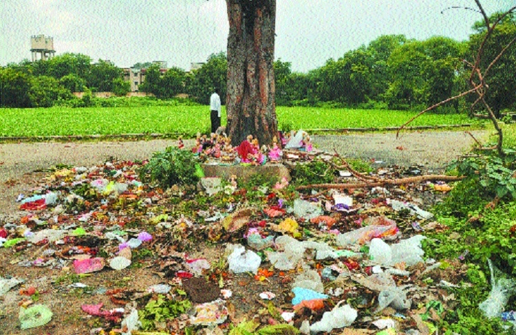 What are you doing to clean your ward? HC's poser to corporators
