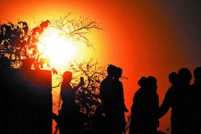 Chilly winds bring cold in Madhya Pradesh