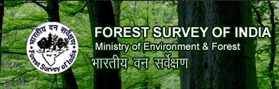 FSI makes forest fire alerts available to Forest Deptt