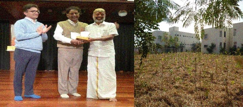 Artificial forest in Sathya Sai Sanjeevani campus