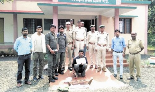 Poacher nabbed for killing Cheetal, cooking meat in Pench