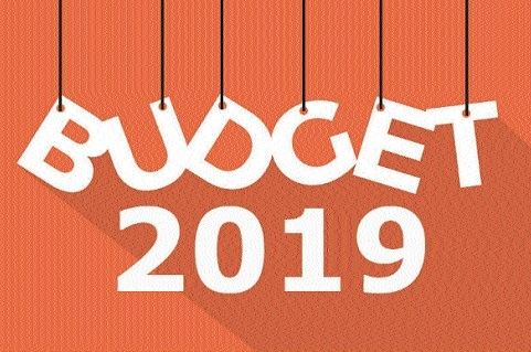 #BUDGET2019: What politicos have to say