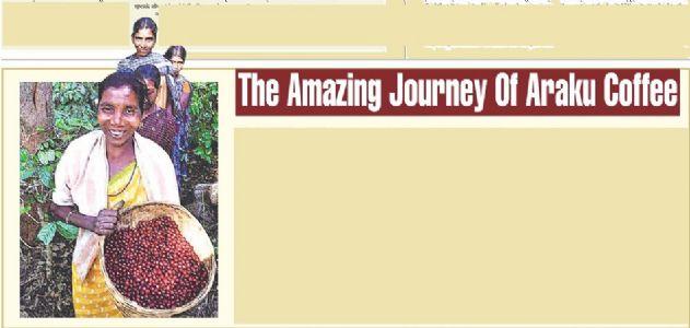 The Amazing Journey Of Araku Coffee
