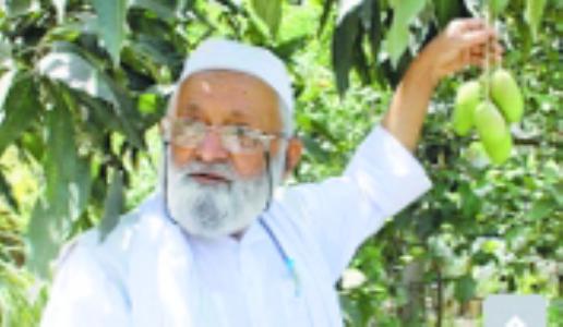New mango variety named after Amit Shah