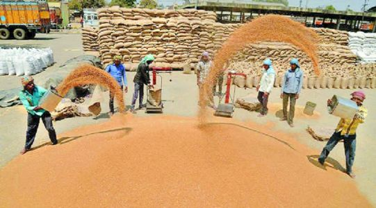 Foodgrains production almost flat at 284.95 MT in 2018-19: Govt data