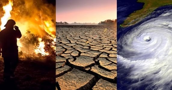 World warned: Change now or endanger food, climate