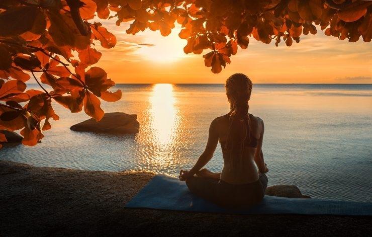 Meditate_1H x