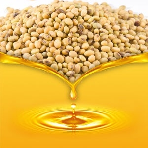Refined soya oil futures