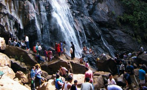 Urgent steps needed to revive tourism sector, says industry