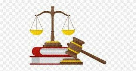 HC directs petitioner to submit fresh representation