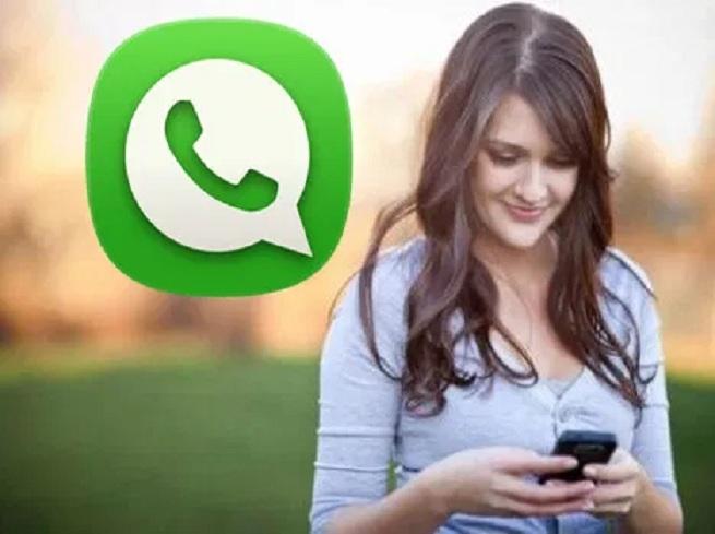 WhatsApp_1H