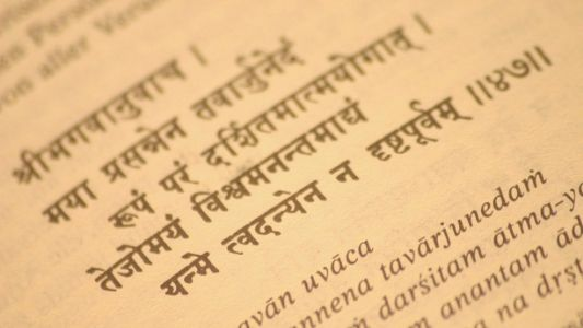 Over 2,000 years on, Sanskrit remains popular in China: Chinese Professor
