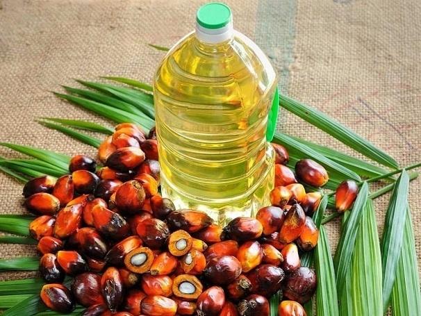 Palm oil _1H